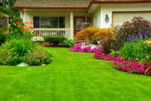 Lawn care Sandpoint Idaho